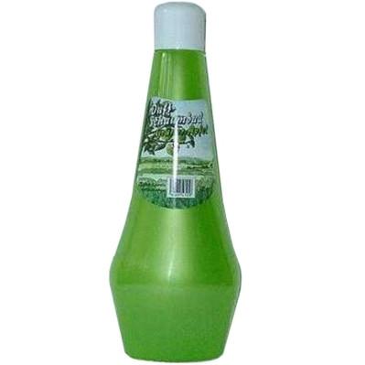 1 Liter Badezusatz: REGINA Duftschaumbad Grüner Apfel
